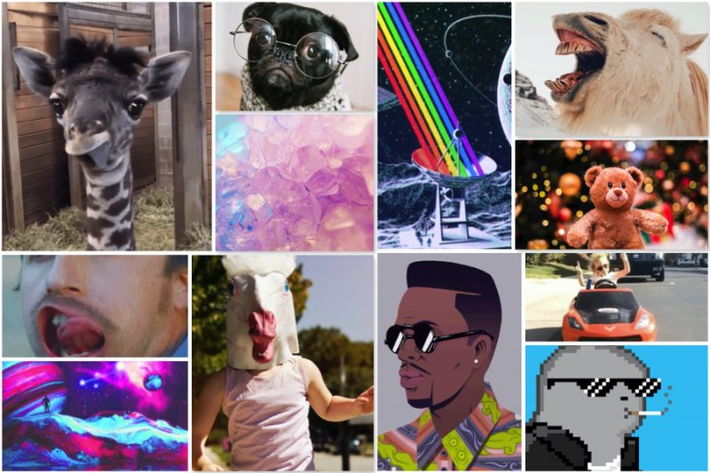 60 Cool Funny Aesthetic Profile Pictures How To Apps